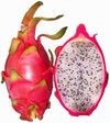 533pxhylocereus_undatus_red_pitahay